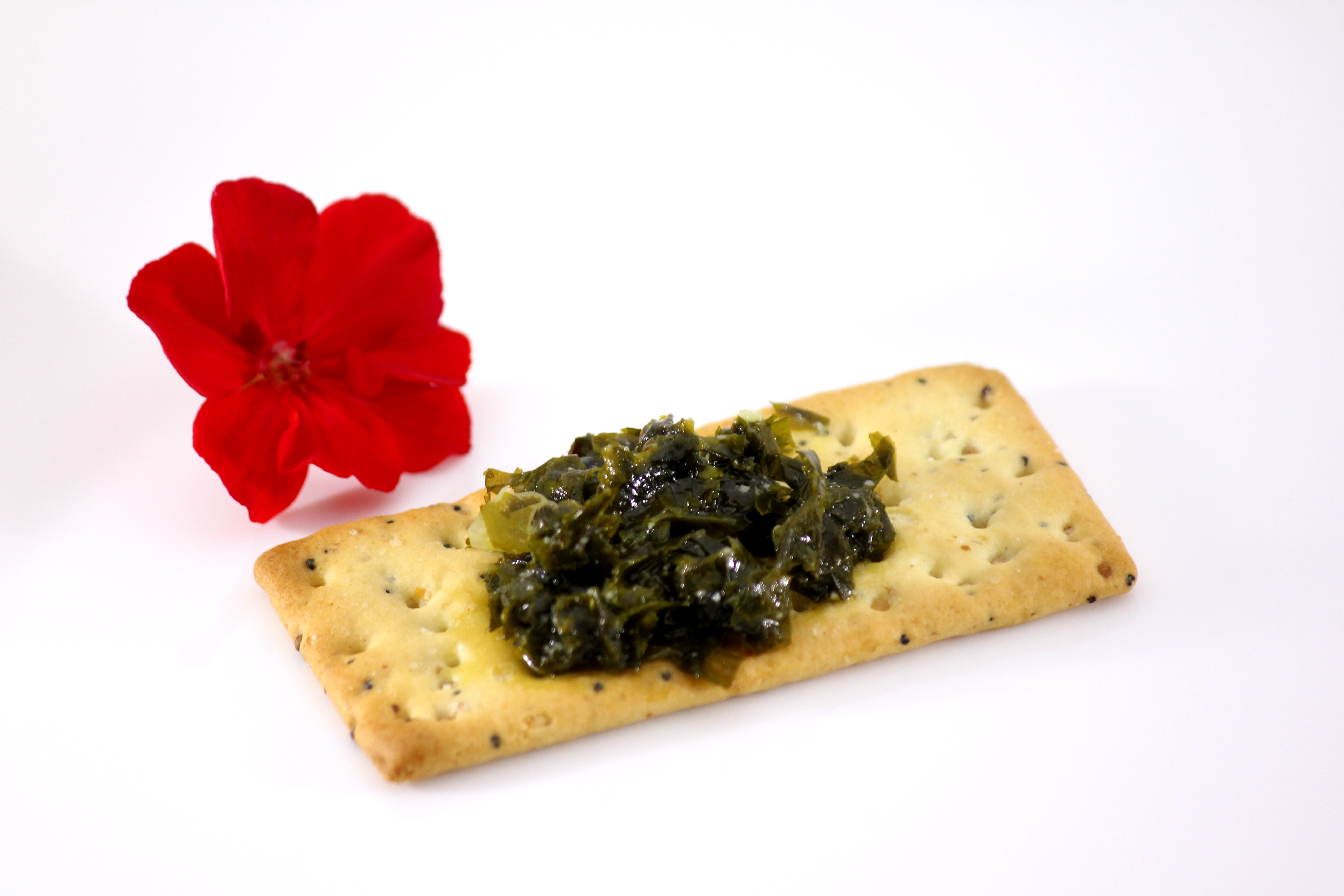 Pesto, Pesto de Kombu
